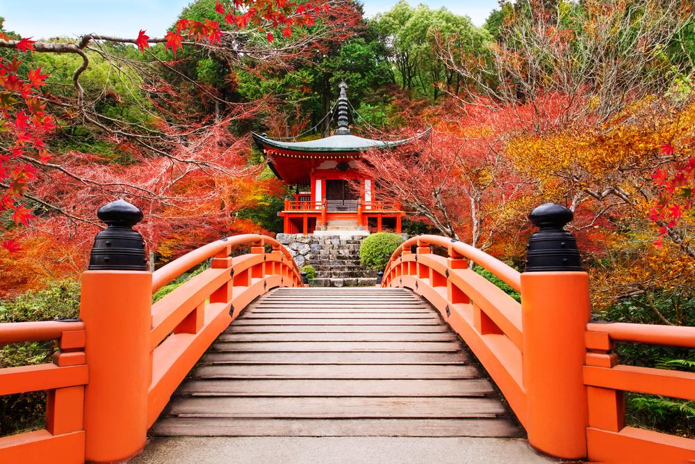 【2018年版】京都祇園周辺のおすすめ紅葉スポット4選