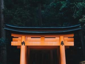 京都の春を120%満喫!穴場のおすすめ観光スポット5選
